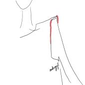 audreysjl shoulder